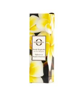 Diffuseur de Parfum Escale Tropicale aux Iles Marquises
