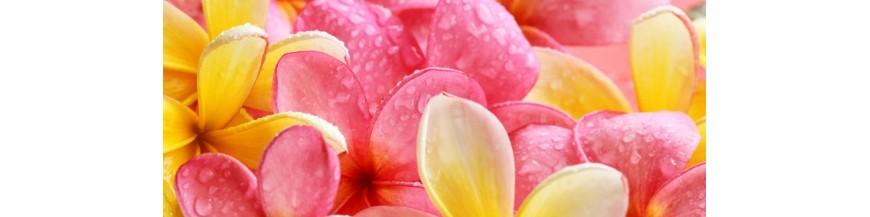 Beauty Nectars